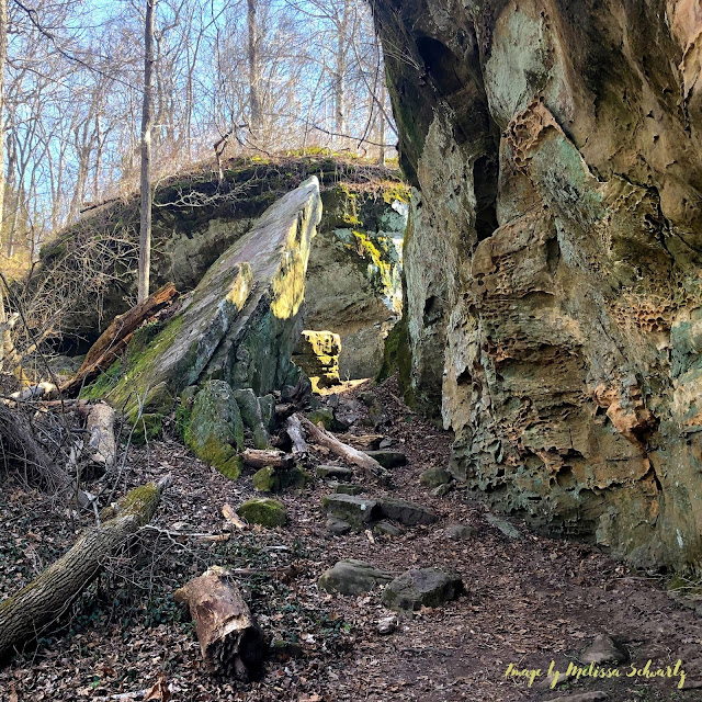 Faulting and folding piece together an otherworldly landscape featuring rocks at different angle and positions at Giant City State Park