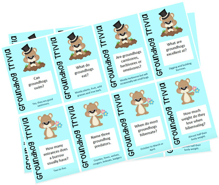 Groundhog Trivia Cards. FREE PRINTABLE. Perfect for Groundhog Day and learning all about groundhogs.