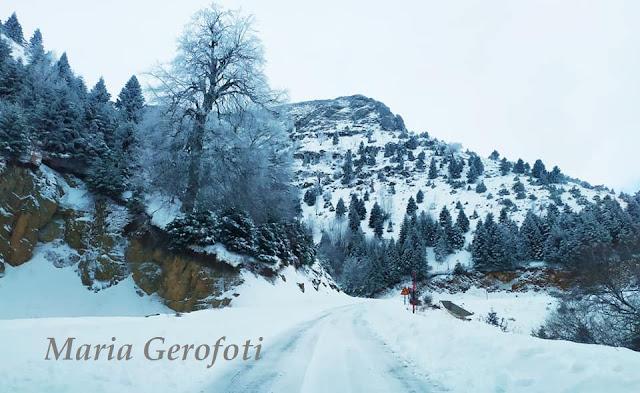 84759329 10157057588950897 791856493228982272 n - Βόλτες στα χιόνια στον Όλυμπο και Κίσσαβο