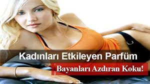 http://www.envercoban.com/gazete-mansetlerinde-ferolle-ask-parfum-yazilari.html