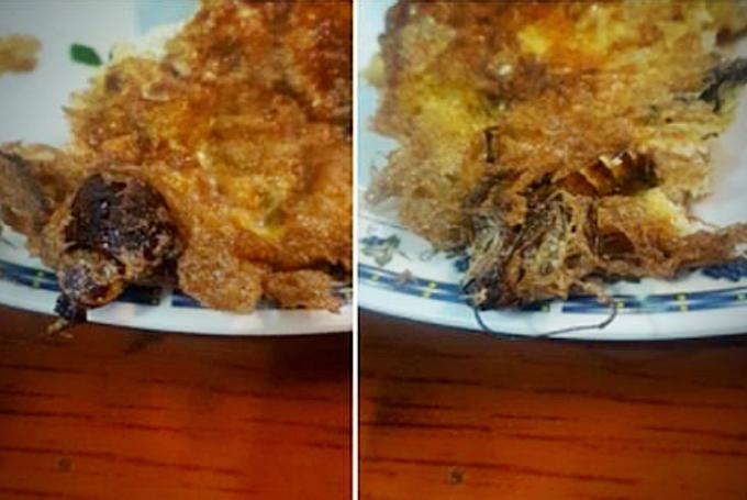 Pelayan hanya ketawa selepas tunjuk telur dadar ada lipas..
