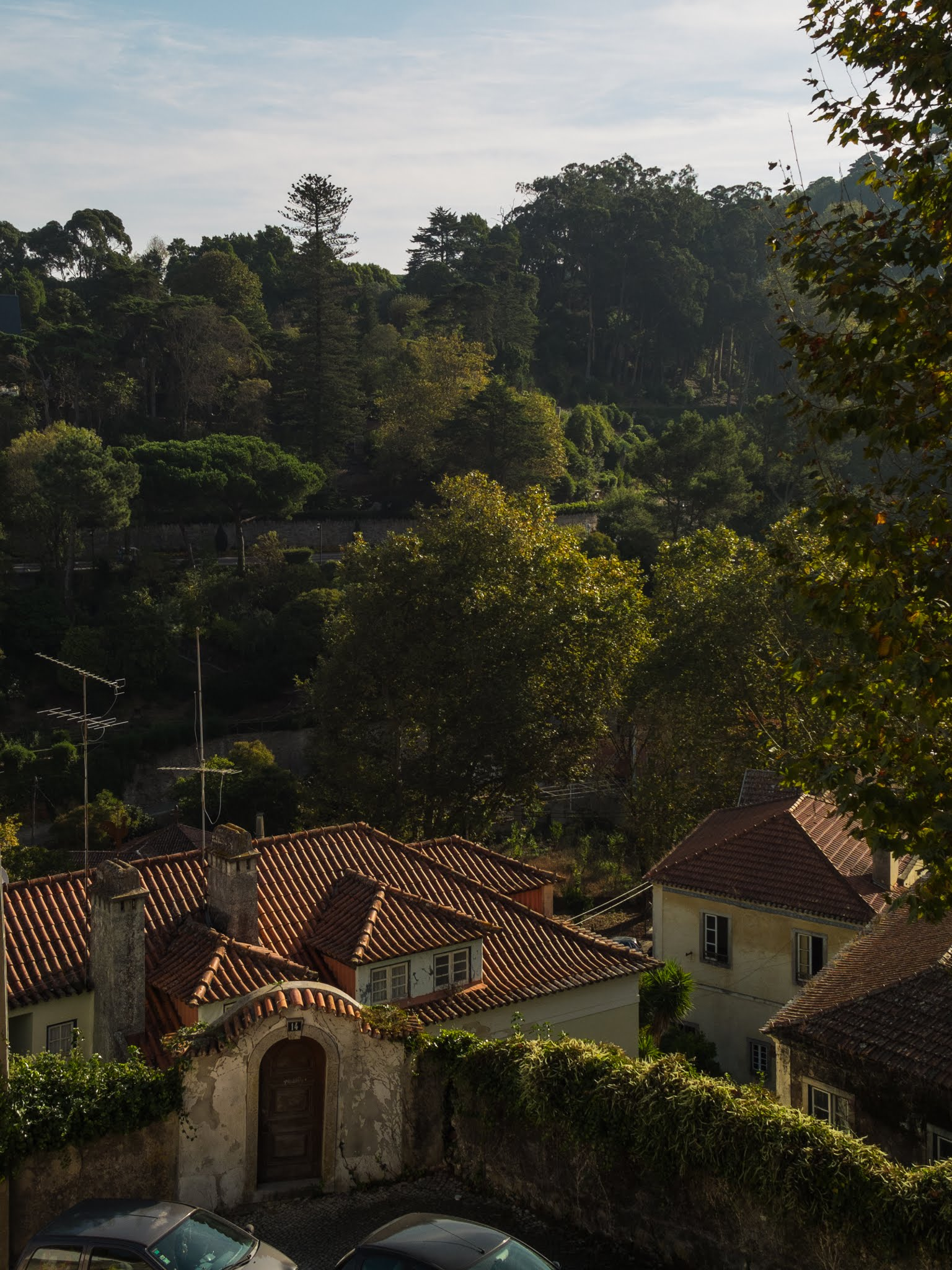 View of terracotta roofs and trees from a hillside in Sintra.