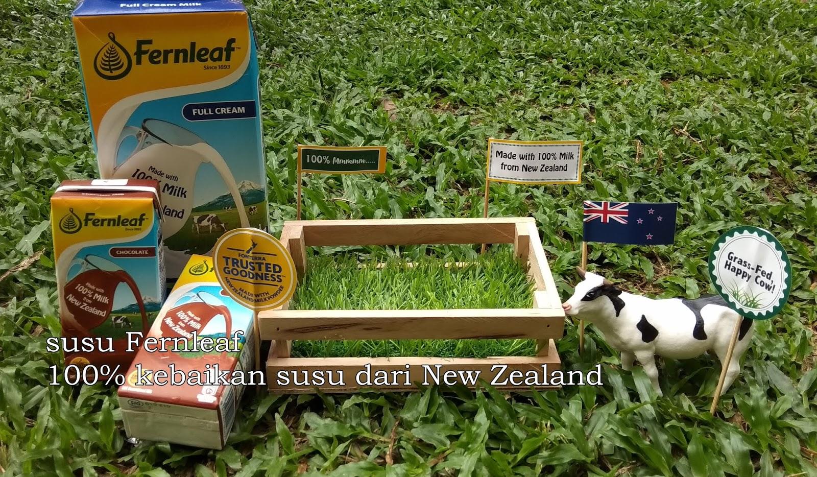 Susu Fernleaf UHT 100% Mmmmm Dari New Zealand Yang Sedapp Penuh Kebaikan