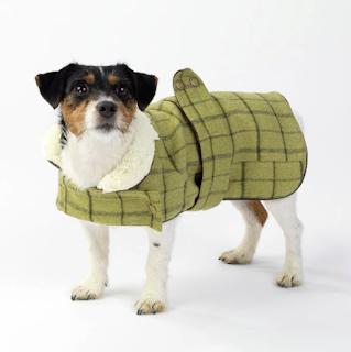 Green Tweed Dog Coat at Mutleys of Ashby de la Zouch