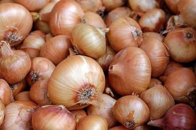 health benefits on onion