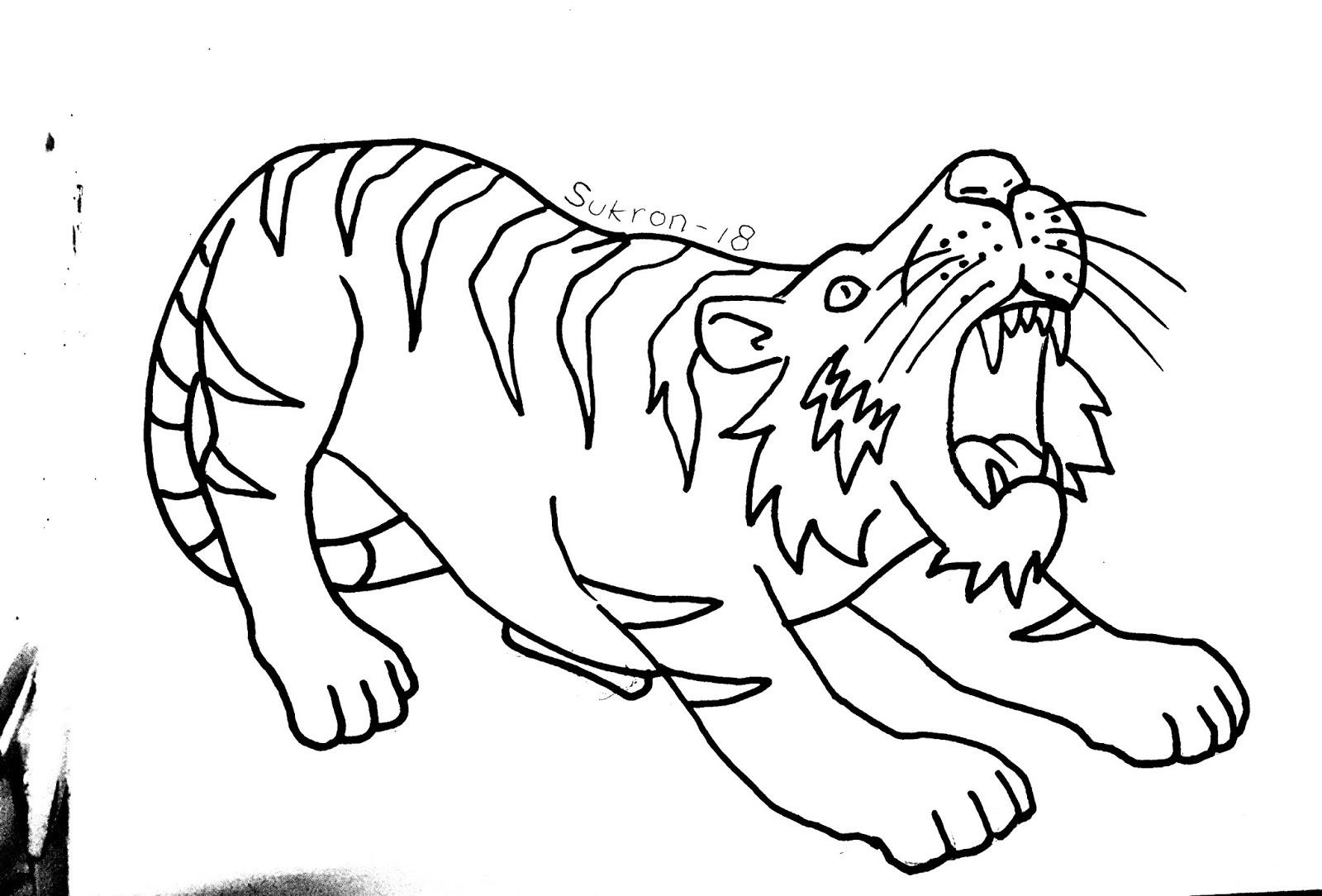 Mewarnai Harimau Menggambar Dan Mewarnai