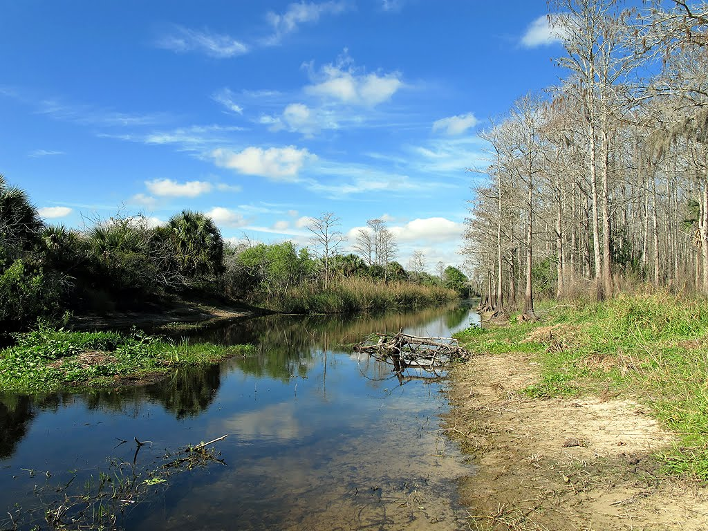 Florida Hikes And Other Outdoor Information Bulldozer