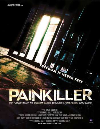 Painkiller 2013 Dual Audio Hindi 250MB Web-DL 480p