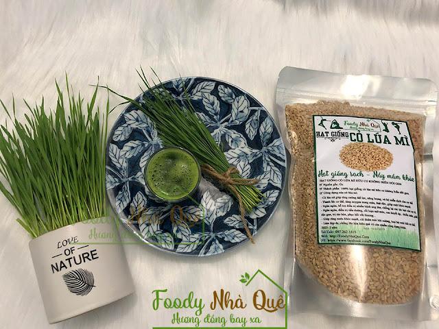 Tác dụng của cỏ lúa mì cho phụ nữ mang thai