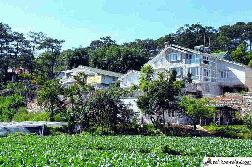 20 Villa Đà Lạt, biệt thự Đà Lạt giá rẻ đẹp gần chợ trung tâm có hồ bơi