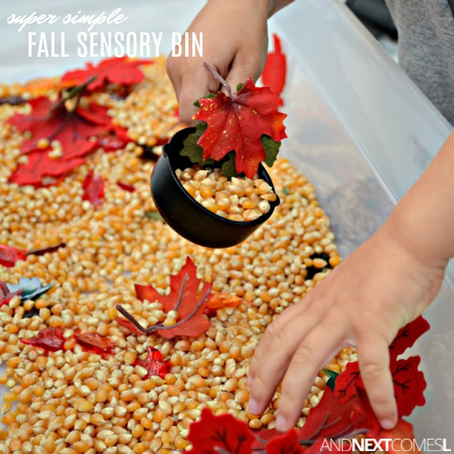 A simple fall sensory bin for toddlers and preschoolers that encourages fine motor skills development