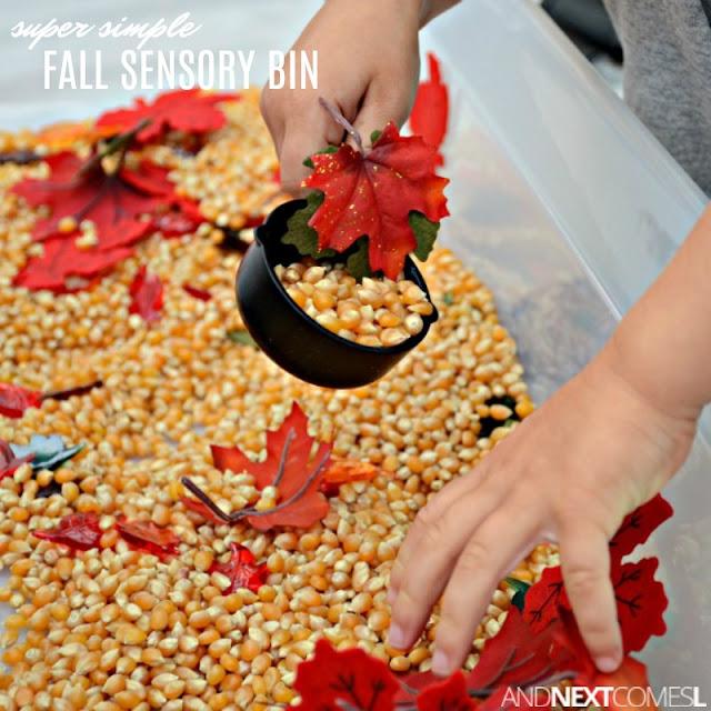 Fall sensory bin for kids