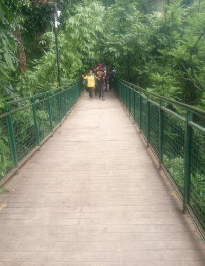 BABAKAN SILIWANGI FOREST WALK BANDUNG ANTARKAN PESAN SEJARAH DAN NILAI  BUDAYA