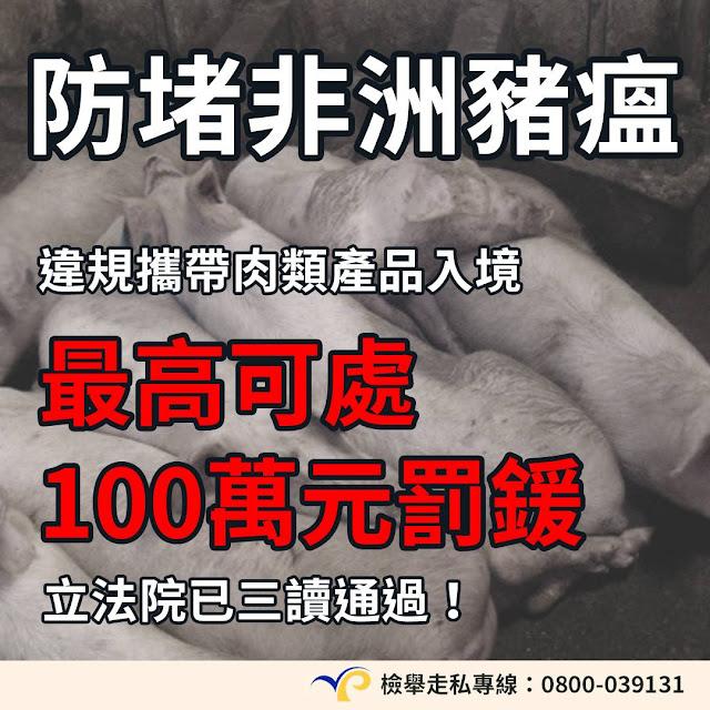 非洲 豬瘟 中國 100萬