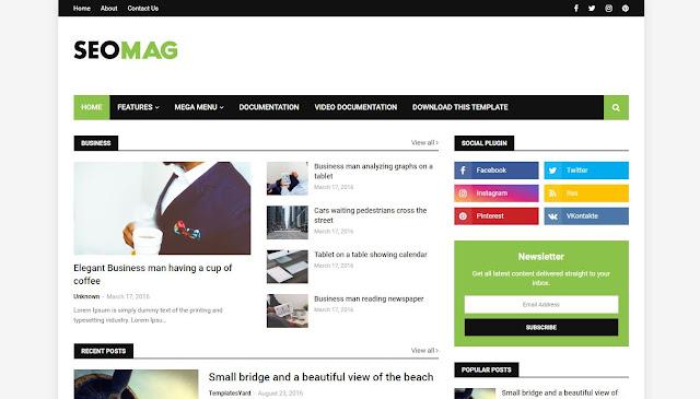 Seo Mag Niche Blogger Template