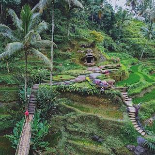 Agro Wisata Alas Harum Bali