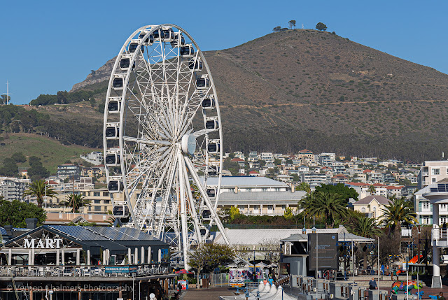 Ferris Wheel V&A Waterfront, Cape Town Image Copyright Vernon Chalmers Photography