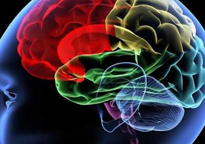 Un reciente descubrimiento realizado por investigadores de la Universidad de Tel Aviv pronto puede cambiar la forma de la enfermedad de Alzheimer es diagnosticada y tratada.