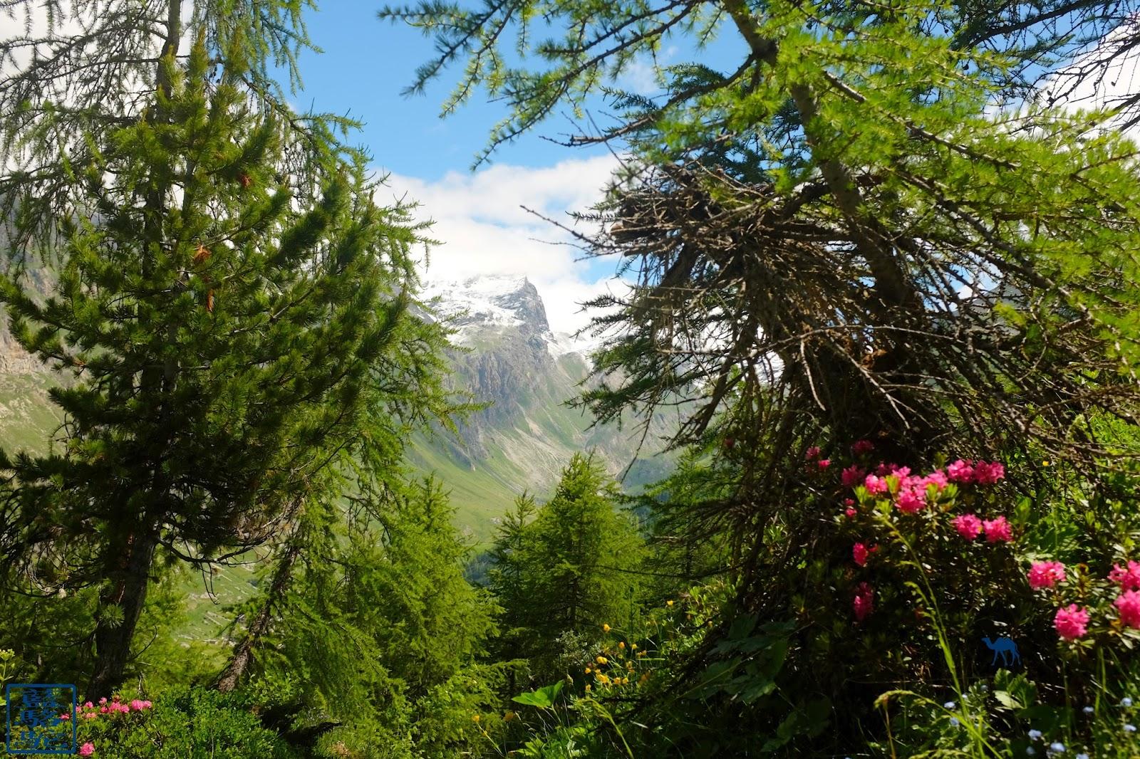 Le Chameau Bleu - Blog Voyage Val d'Isère - Val d'Isère - Randonnée en Montagne France