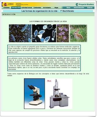 http://recursostic.educacion.es/ciencias/biosfera/web/alumno/1bachillerato/organizacion_sv/index.htm