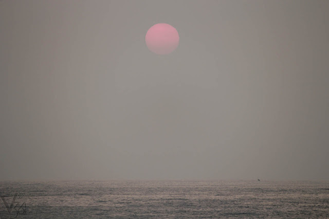 First sights of Sun rise through the Indian east-coast