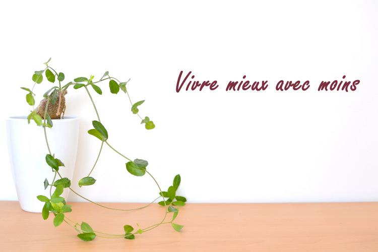 less is more, vivre mieux avec moins, minimalisme