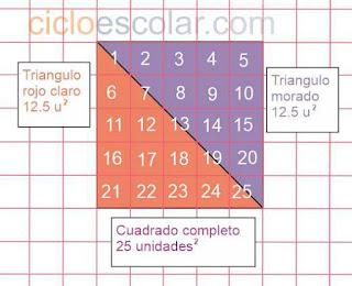 bases y alturas desafío 28 contestado área de cuadrado