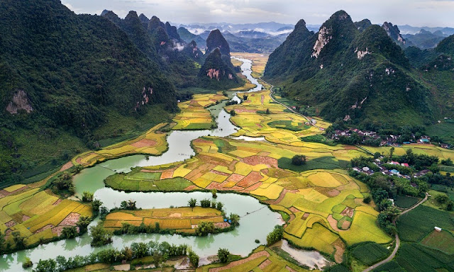 Surprise At The Beauty Of North Vietnam In Ripe Rice Season 3