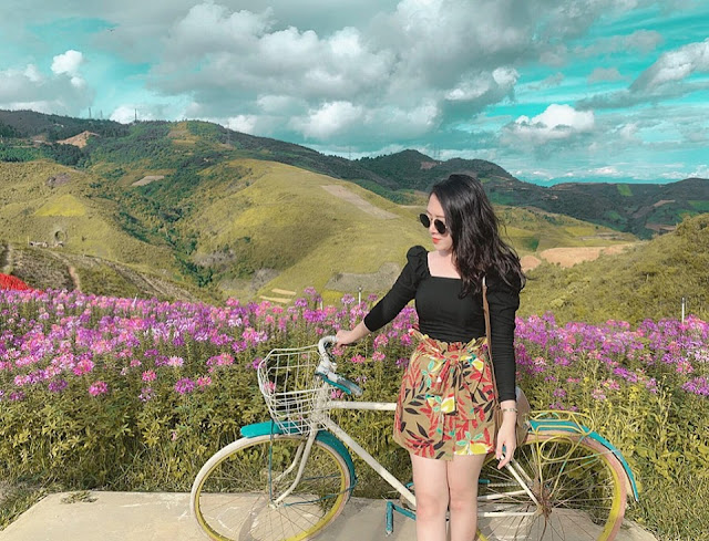 Đồi hoa tím biếc tựa trời Âu thu hút giới trẻ Việt check-in 4