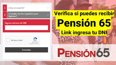LINK Verifica si cumples los requisitos para recibir pension 65 Ingresa tu DNI