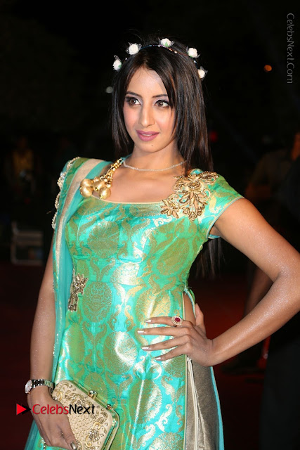 Actress Sanjjanaa Stills in Green Long Dress at Gemini TV Puraskaralu 2016 Event  0001.JPG
