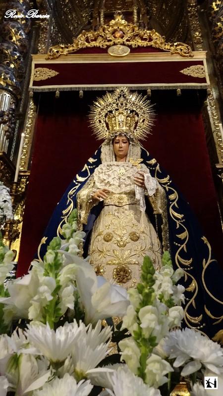 Cofradias Sevilla Besamanos A Nuestra Senora De La Cabeza Siete