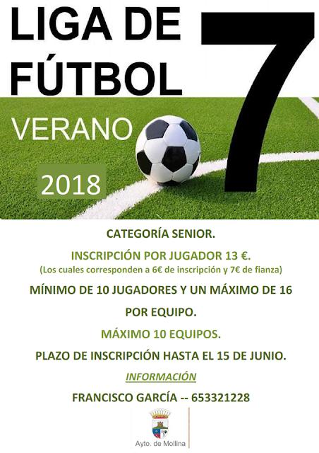 Liga de Fútbol 7 de Mollina