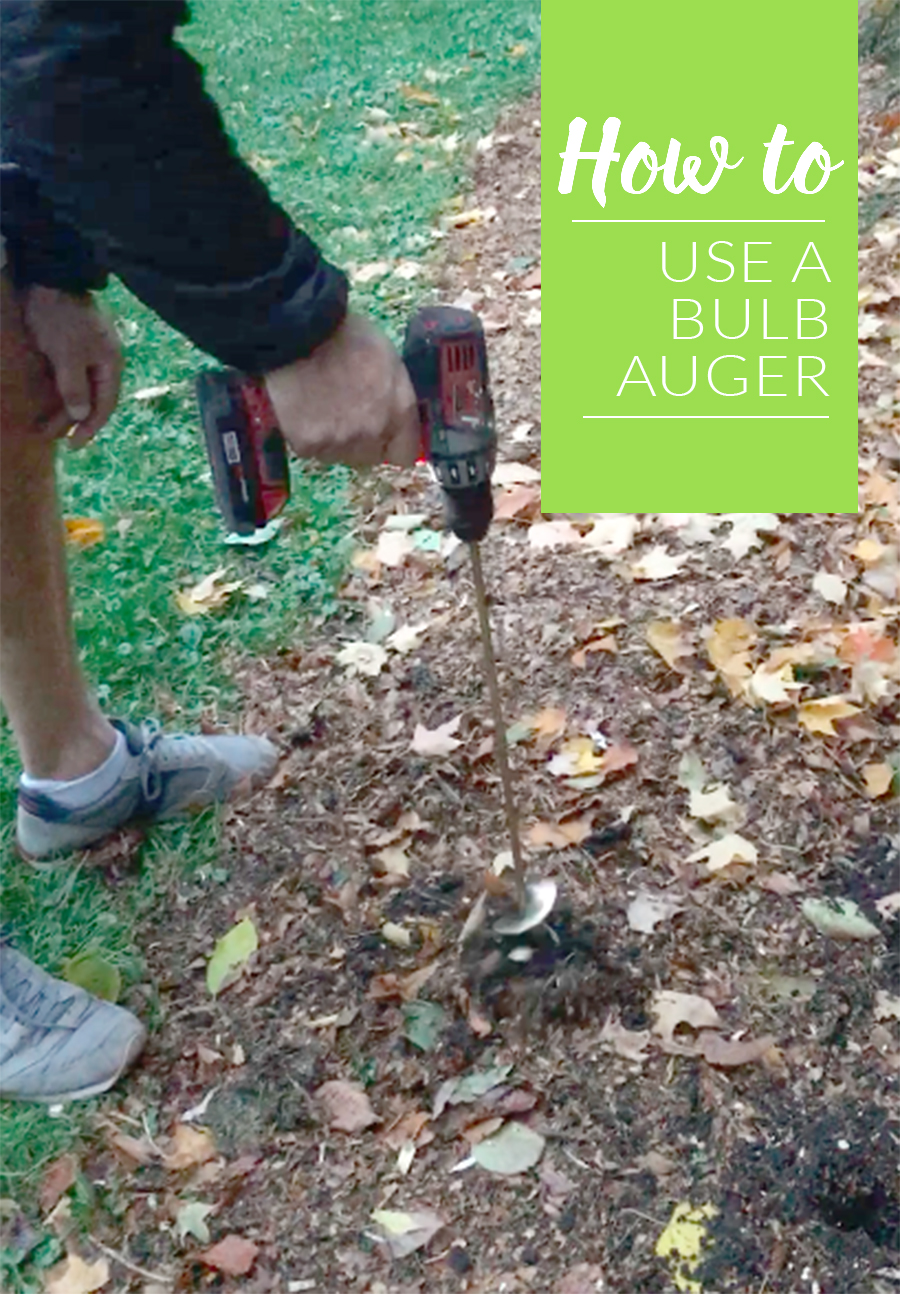 How To Use A Bulb Auger And Plant Bulbs In Minutes The Impatient