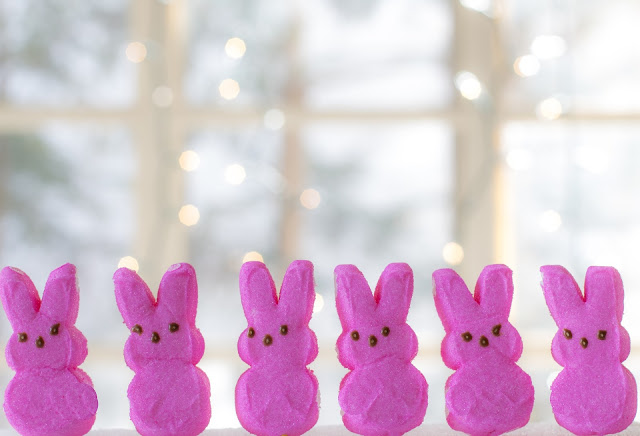 Pink Bunnies, Living From Glory To Glory Blog...