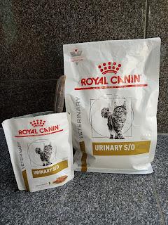 Royal-canin-untuk-obati-flutd