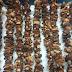 Nấm hương rừng - Đặc sản danh tiếng của Sapa