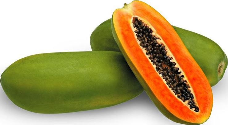 250 Biji Benih Unggul Buah Pepaya Calina California Carica Papaya Probolinggo