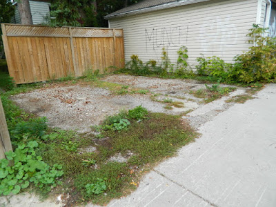 Toronto gardening services Hillcrest backyard cleanup before by Paul Jung