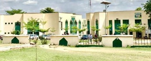 List of courses offered in IBB University