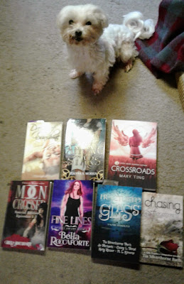 Ozarks Indie Book Fest, Lexi, On My Kindle Book Reviews