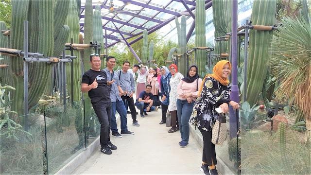 Paket Tour Singapura 3H2M