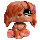 Littlest Pet Shop Collectible Pets Sheepdog (#1105) Pet