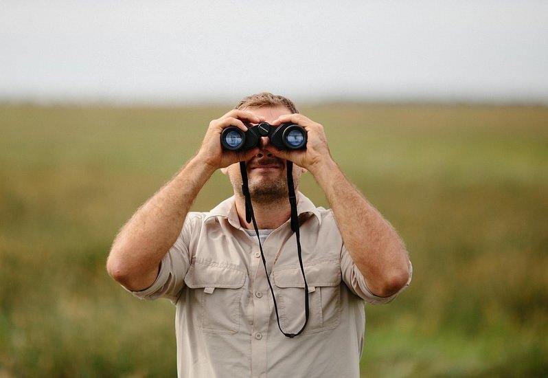 Vigilante da natureza