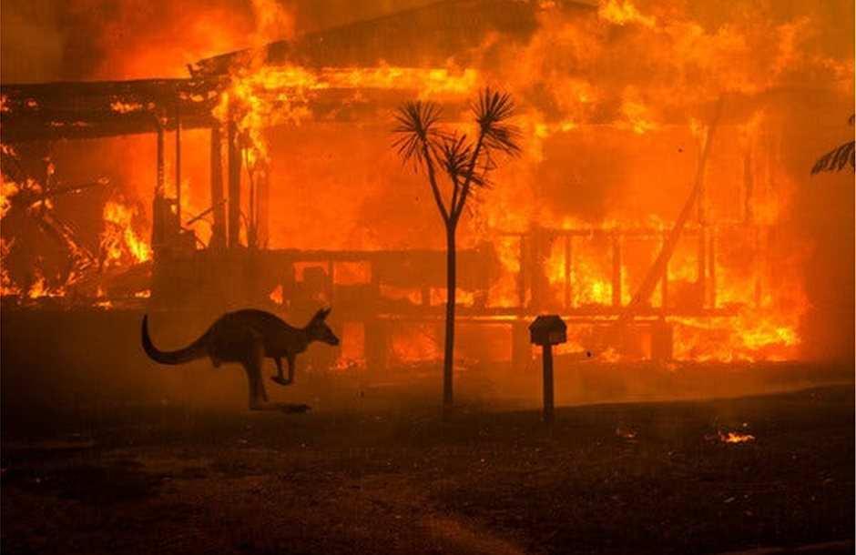 Η οικολογική καταστροφική στην Αυστραλία μέσα από ένα μικρού μήκους Βίντεο