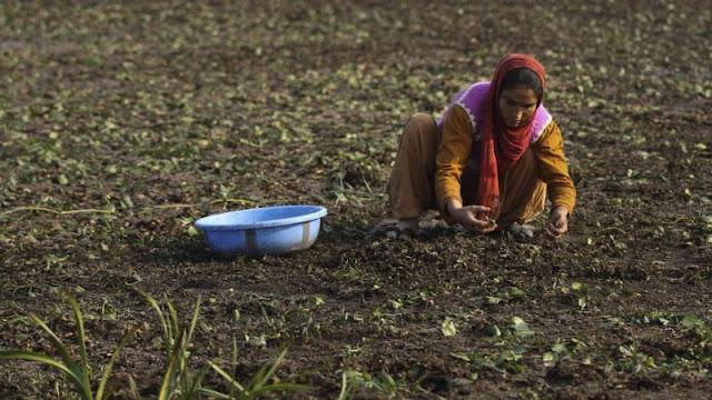 PBB : Jutaan Orang Menderita Kemiskinan Akibat Perubahan Iklim