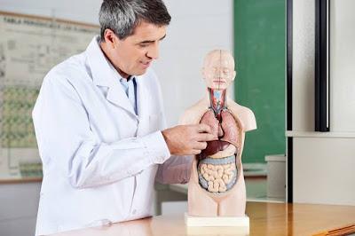 Tugas Spesialis Penyakit Dalam