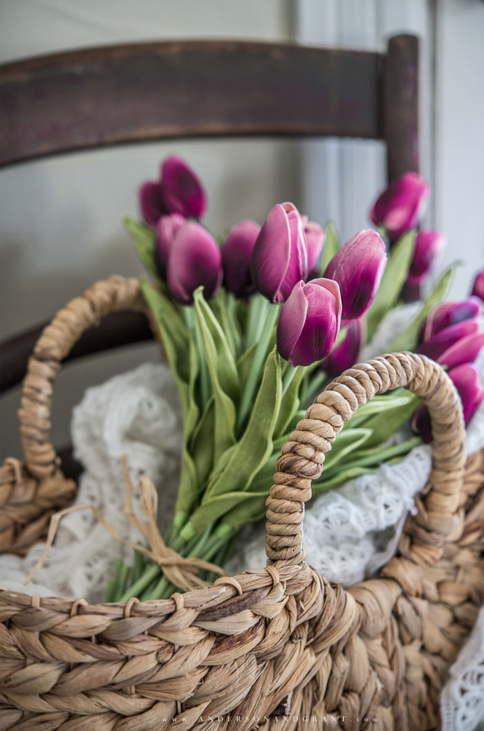 Purple tulips in basket