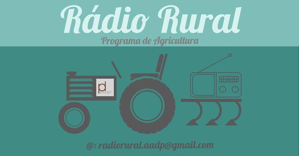 Resultado de imagem para radio rural portalegre