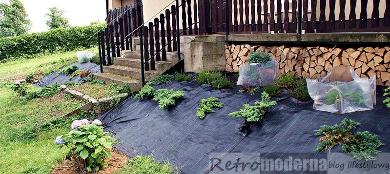 Ogród Na Skarpie Przed Domem Retromoderna
